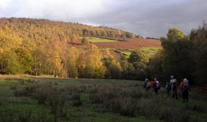 4th place: Autumn colours around Gardom's Edge
